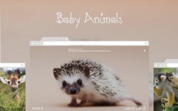 Baby Animals HD Wallpaper New Tab Theme