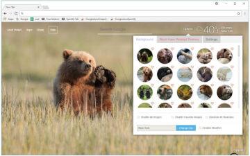 Bears Backgrounds HD Custom Bear Cubs New Tab