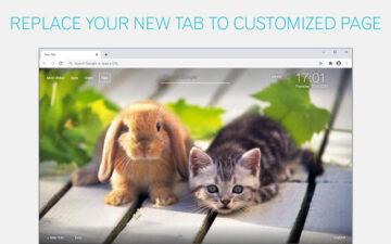 Cat And Rabbit Wallpapers Cats Rabbits NewTab