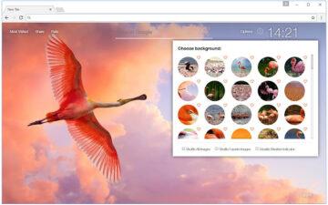 Flamingo Wallpaper HD Custom Flamingos NewTab
