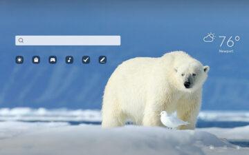 Arctic Wildlife HD Wallpapers New Tab